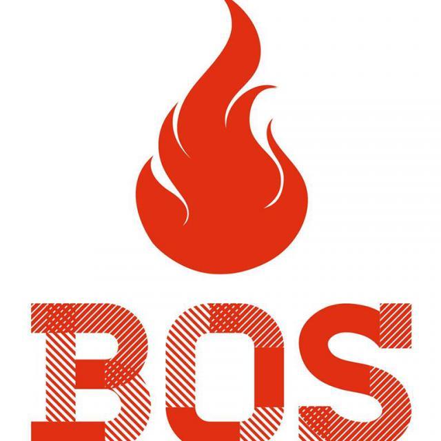 Компания Бос, Огнезащитные материалы