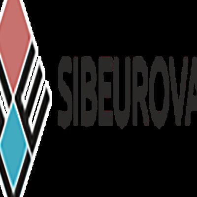 СибЕвроВэн, Производство фургонов для транспортировки продуктов глубокой заморозки